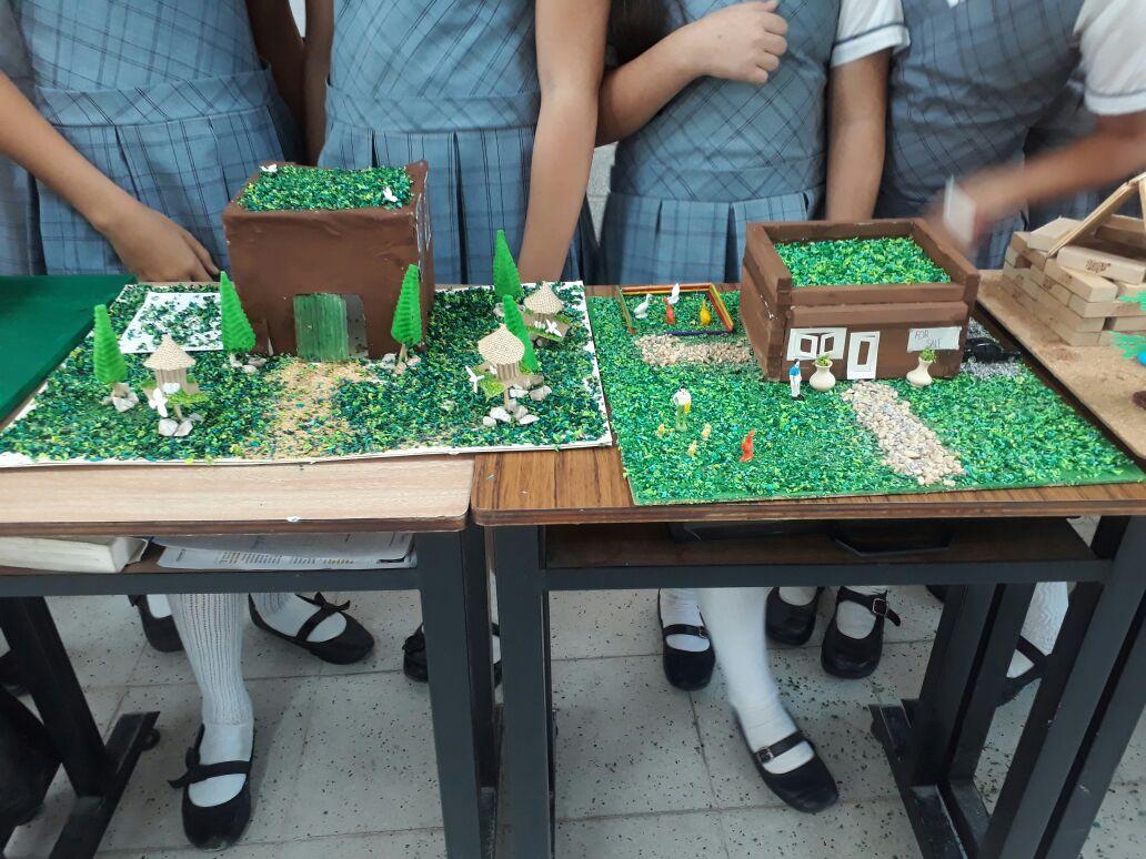 161 5to Grado Piensa Verde Y Construye Verde Colegio San